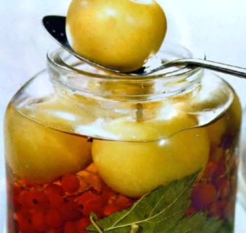 Apples, pickled with red currant