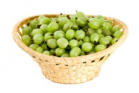 Gooseberry compote