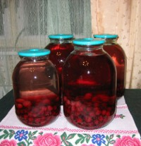Compote of fresh apples and cherries