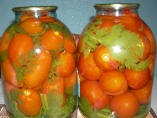 Tomatoes marinated with carrot tops