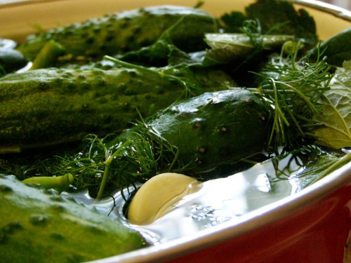 picture - Season with salt cucumbers: the secrets of your favorite snacks