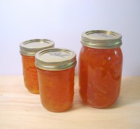 Rhubarb jam with oranges